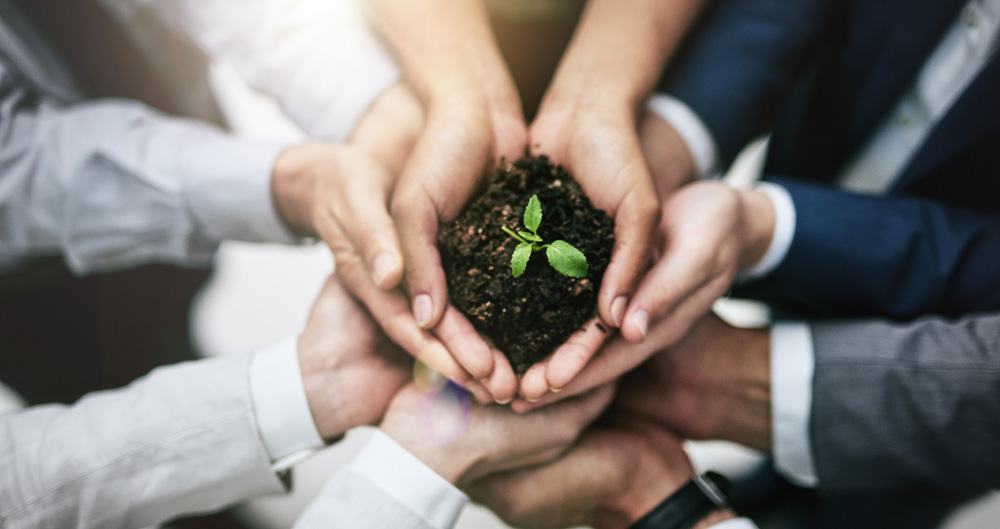 5 Key Factors for Driving Environmental Sustainability Success